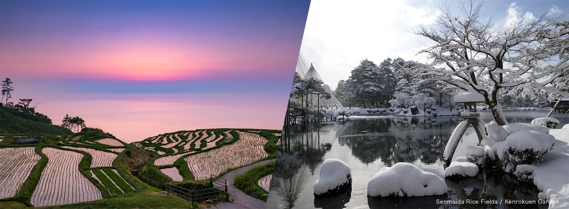 Senmaida Rice Fields / Kenrokuen Garden